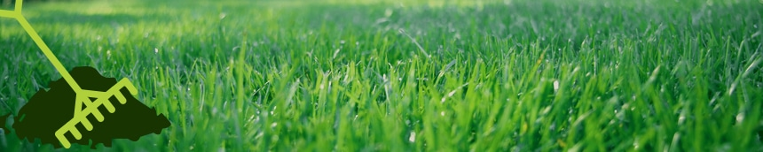 lawn topdressing, all turf lawn care, atlanta top dressing
