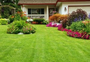 Lawn Care Services in Buford GA, buford lawn services, lawn care in buford ga