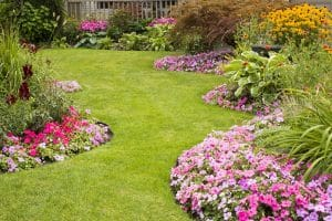 Lawn Care Lawrenceville GA