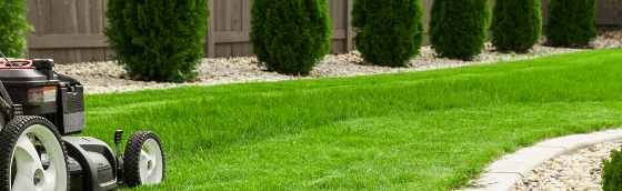 5 easy landscape edging ideas for your atlanta lawn, all turf lawn care
