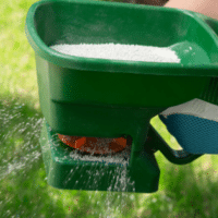 when to fertilize your lawn, all turf lawn care, lawn fertilization atlanta