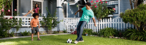 tips on how to plant front yard landscaping, all turf lawn care