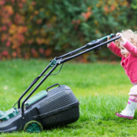 Green Lawn, All Turf Lawn Care, Lawn Care Tips, Atlanta lawn Care