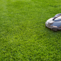 Lawn Service, Lawn Care Service, All Turf Lawn Care, Atlanta GA