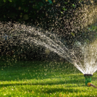 How to Get the Best Lawn Possible, Best Lawn Care, All Turf Lawn Care, Atlanta GA
