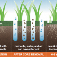 Lawn Aeration, Best Results from Aeration, All Turf Lawn Care, Atlanta Ga