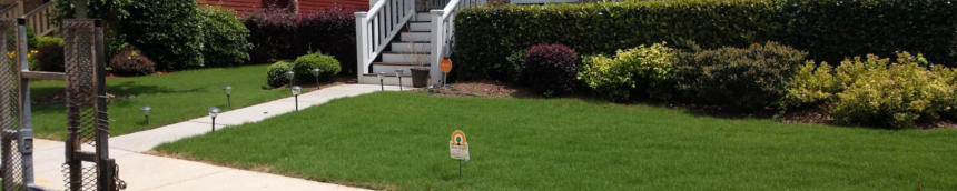 Caring for a Small Lawn, Lawn Care Service, All Turf Lawn Care, Atlanta GA