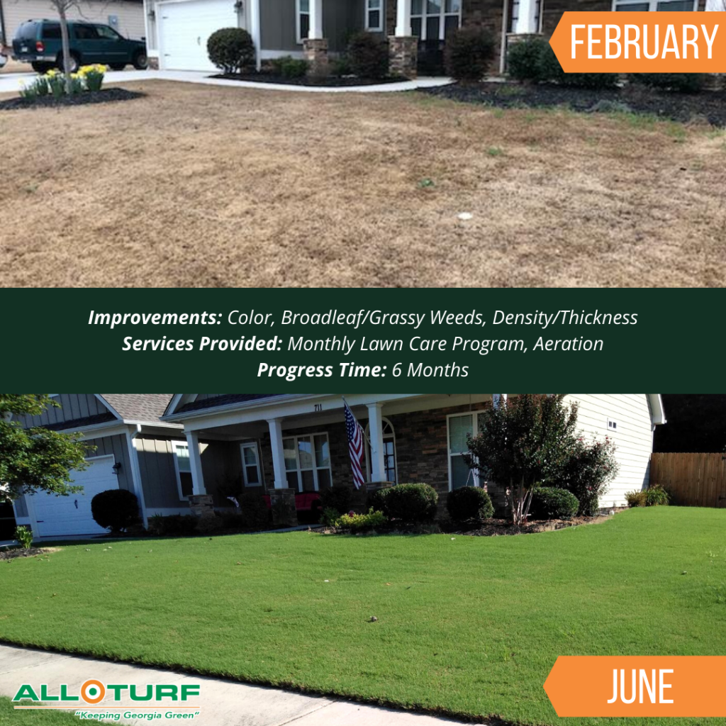 Lawn Care Service, Lawn Care Results, All Turf Lawn Care, Monroe GA