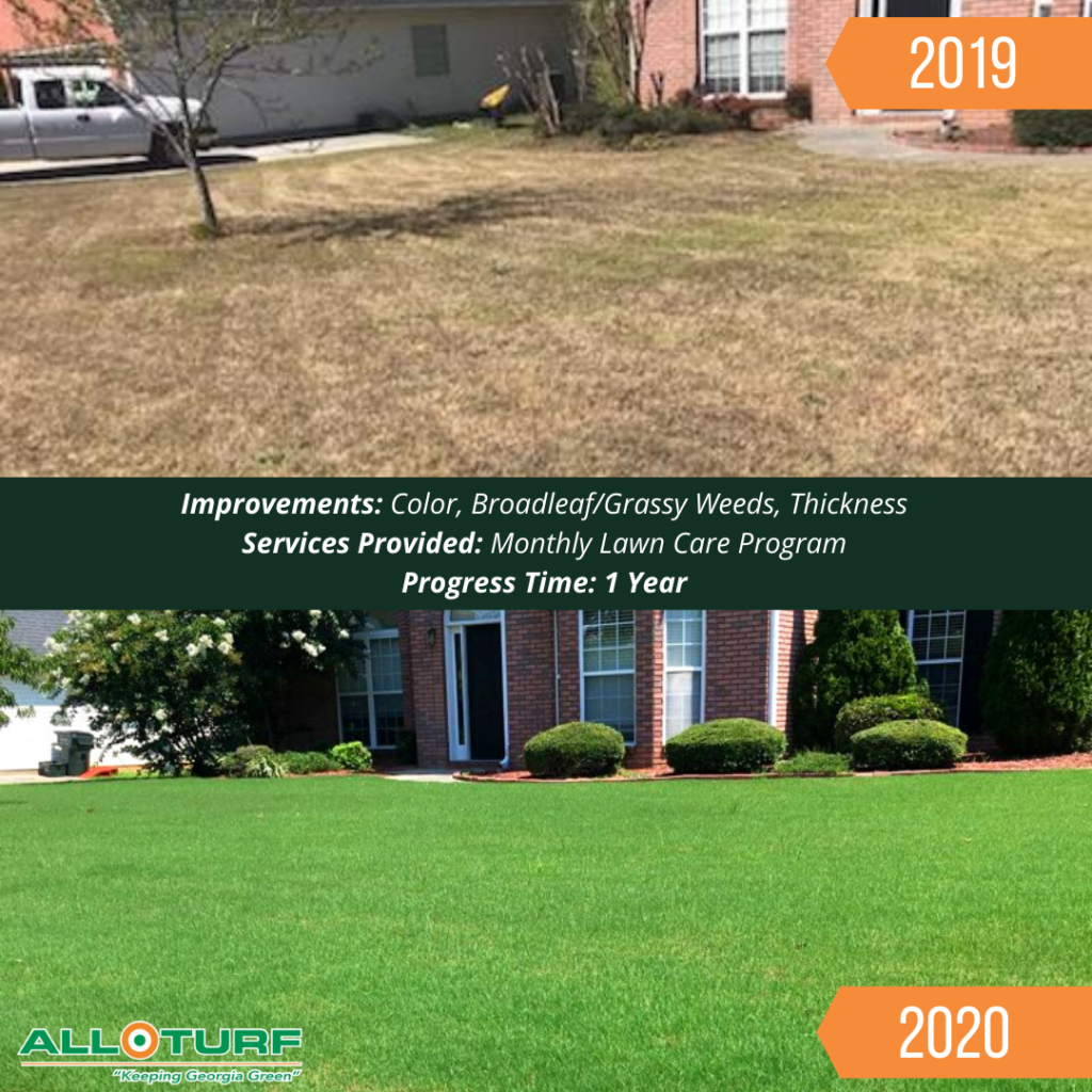 Lawn Care Service, Lawn Care Results, All Turf Lawn Care, Covington GA
