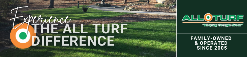 all turf lawn care, lawn care in atlanta, lawn care service results