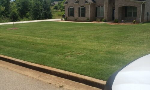 lawn care results, green lawn, all turf lawn care, best lawn care services in atlanta